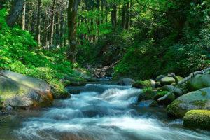river_00006